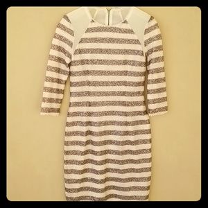 Rachel Roy Dark Gray & White sequin dress